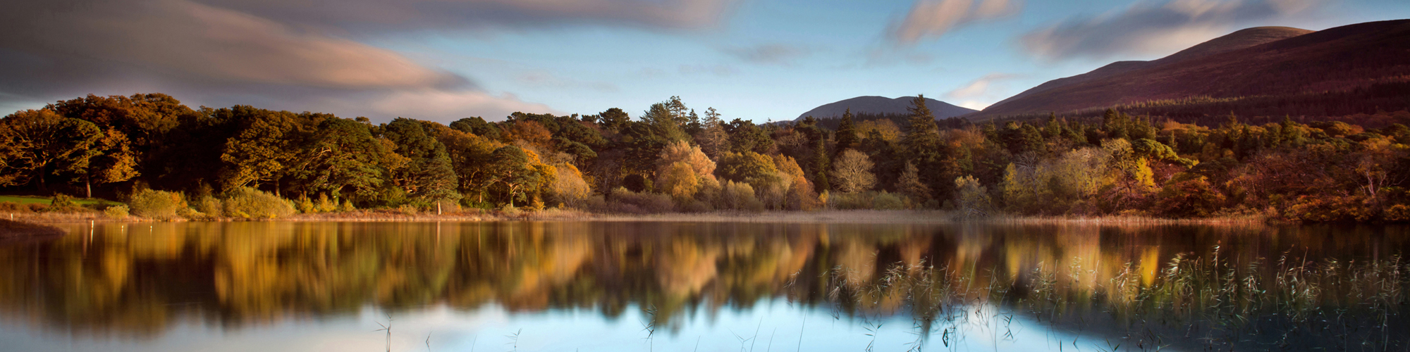 Killarney Photo Tours - Cookies and Privacy Policy