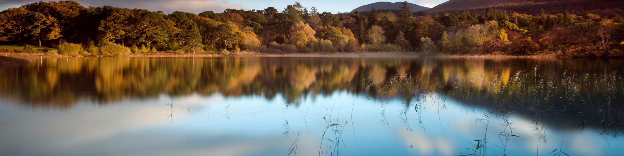 Killarney Photo Tours - One On One Photography Tutorials